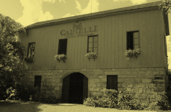 Vinícola Cainelli: conhecendo a história e visitação