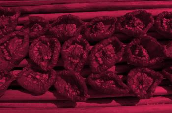 Receita de Molho de tomate seco: aprenda a fazer e escolher a massa certa