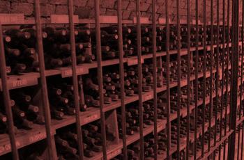 Vinícola Dal Pizzol: da origem aos vinhedos