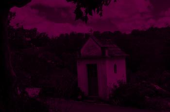 Casa Marques Pereira: descubra os segredos de um vinho perfeito!